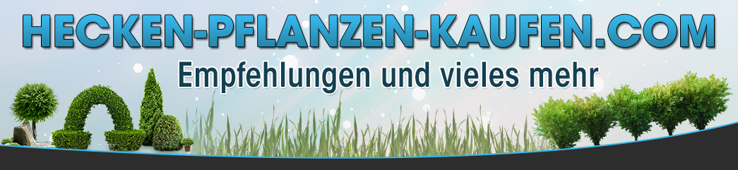 hecken-pflanzen-kaufen.com